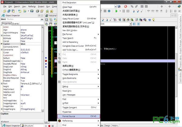 delphi源码格式化工具(DelForEx) 2.5.4 中文版