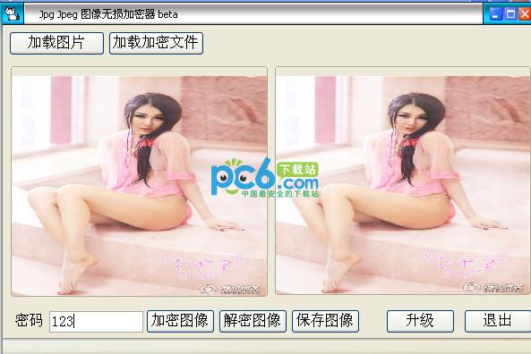Jpg Jpeg 图像无损加密器