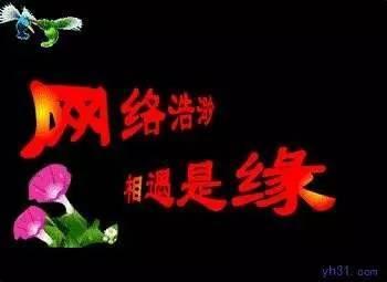 中年人QQ微信聊...