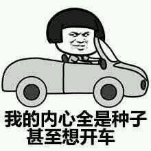 开车表情包