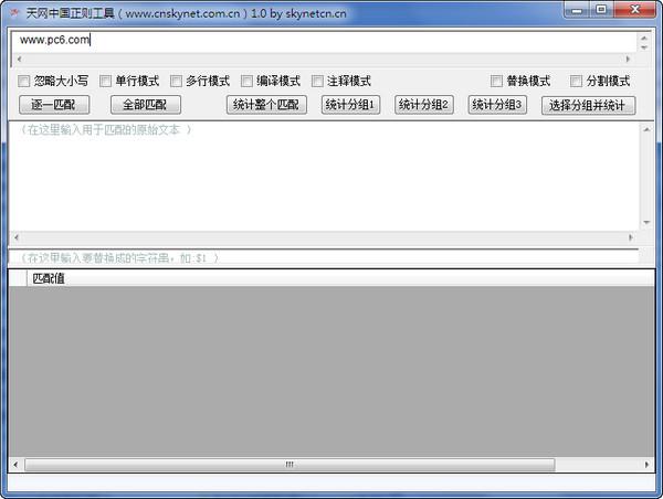 天网中国正则工具 1.0 绿色免费版
