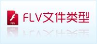flv文件类型
