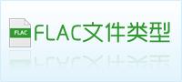 flac文件类型