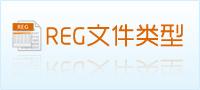 reg文件类型