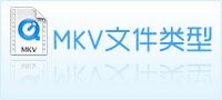 mkv文件类型
