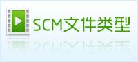 scm文件类型