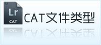 cat文件类型