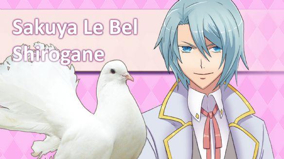 《帅鸽男友典藏版》