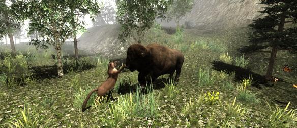 《野性:美洲狮的生活》