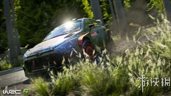 《世界汽车拉力锦标赛6》