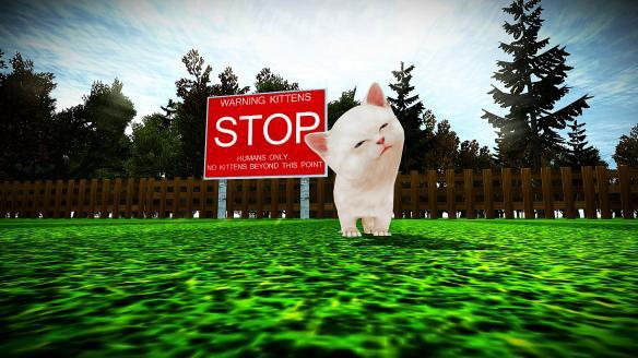 《小猫横冲直撞》
