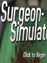 《外科模拟2013:周年版》 免DVD光盘版