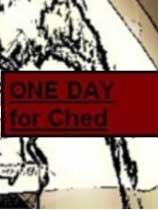 《契德的日常》