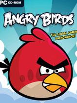 《愤怒的小鸟合...