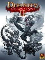 《神界:原罪2》 免安装简体中文绿色版