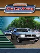 《城市汽车驾驶》 免安装简体中文绿色版