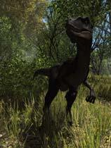 《恐龙森林》 免安装绿色版