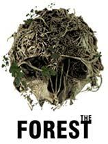 《森林》 免安装中文绿色版