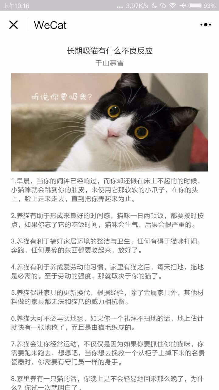 撸猫猫小程序