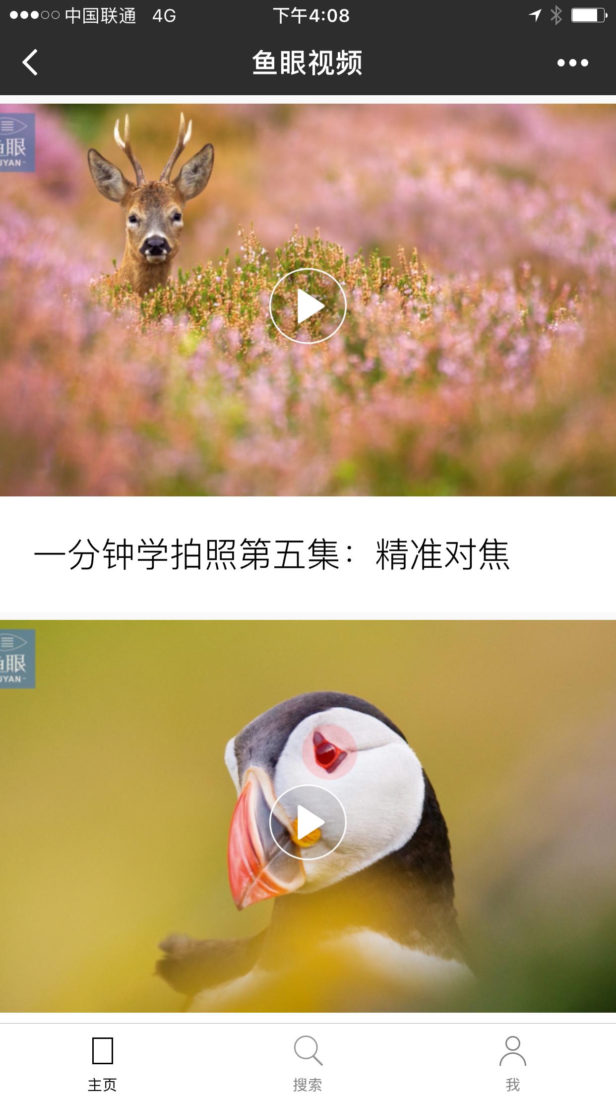 鱼眼视频V小程序