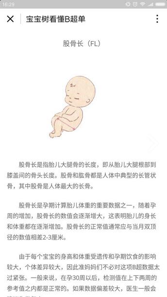 宝宝树看懂B超单小程序