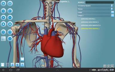 人体构造:Anatomy 3D Pro