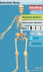 轻松人体解剖:Easy Anatomy 3D
