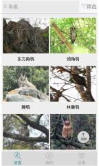 中国野鸟速查