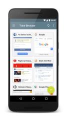 气泡浏览器:Trine Browser