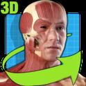 輕松人體解剖:Easy Anatomy 3D