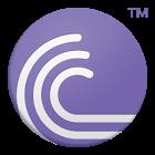 BitTorrent Torr...