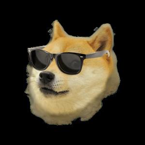 Doge天气挂件:Doge Weahter Widget 1.1.0