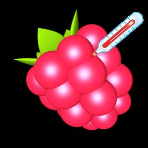 树莓派监控:RasP...