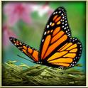 季禅动态壁纸:Season Zen HD 1.9.1
