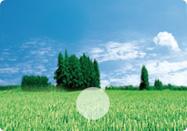 区工业环境整治工作总结