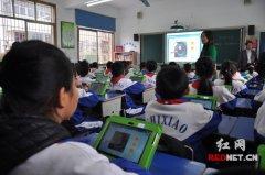 2012年上半年小学教学工作总结