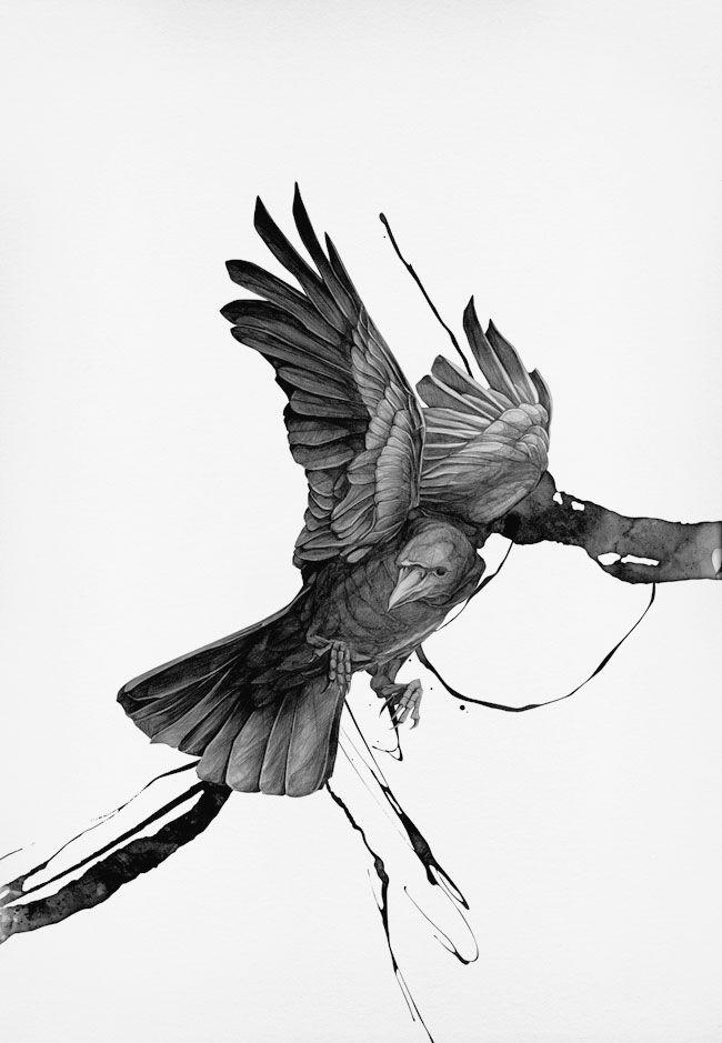 Crow Designer