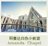 阿曼达企业建站...