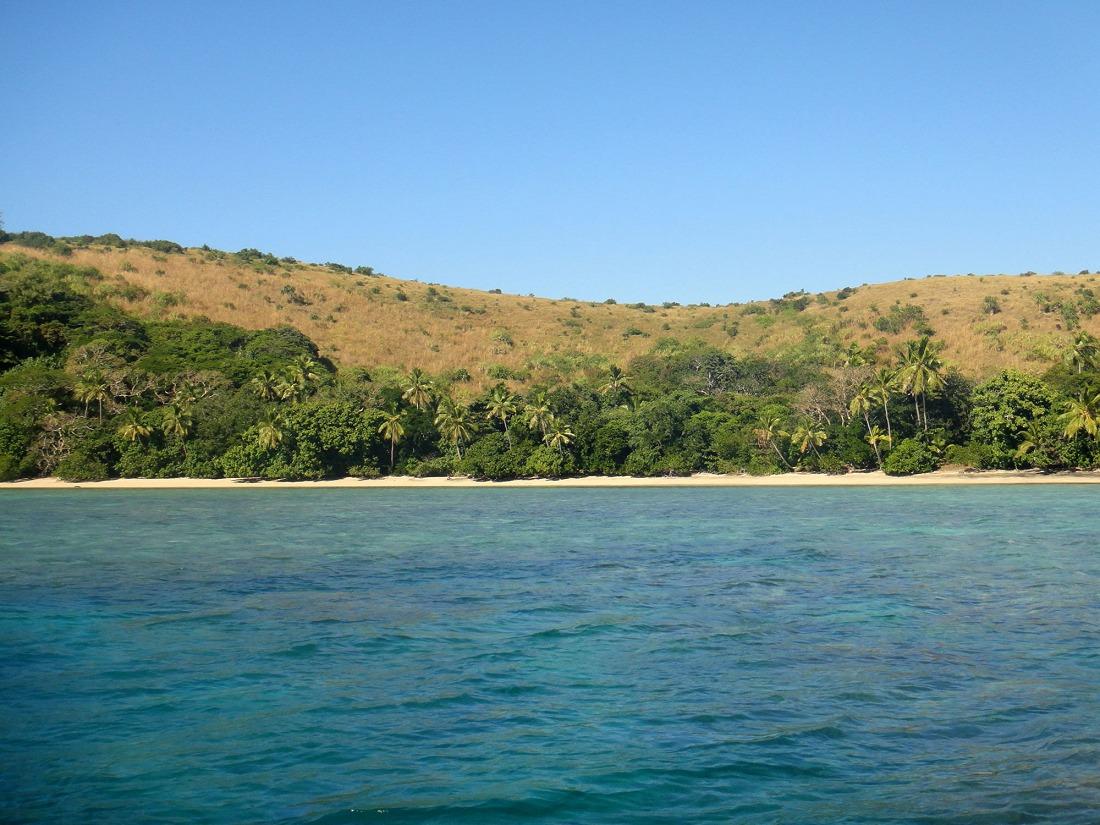 RA Turtle Bay