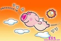 小猪救唐老鸭...