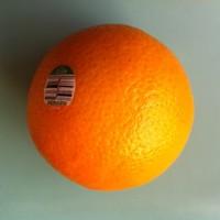 打橙子 免费版