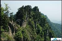 自然保护区助理工程师岗位职责