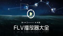 夜潭FLV播放程序