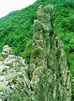 2010年民革吉林省白山市委工作总结范文