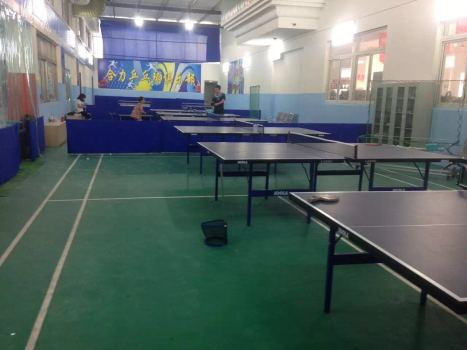 Spb Pong