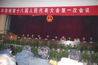 镇妇女代表大会选举办法