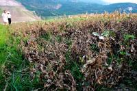 卫生系统抗旱救灾工作总结