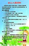幼儿园规章制度-课题研究