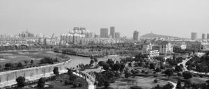 XX社区开展城市管理年城市基础年总结