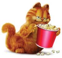 加菲猫的美梦...